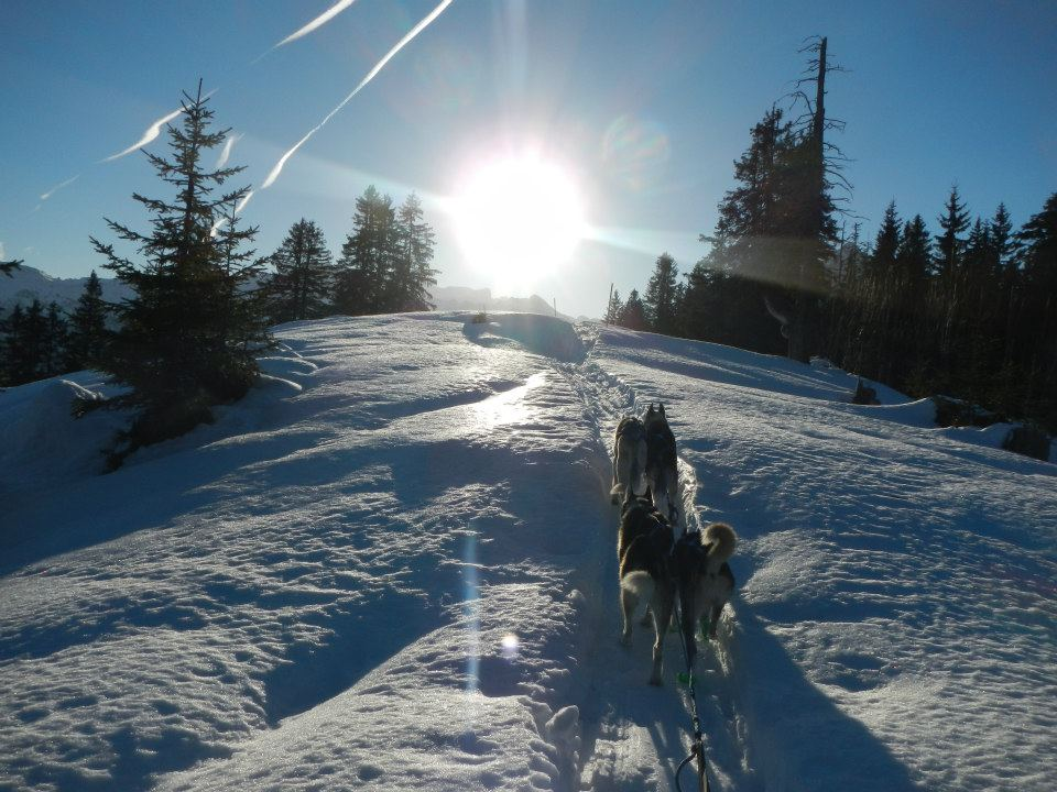 Schneerennen Saison 2012/13